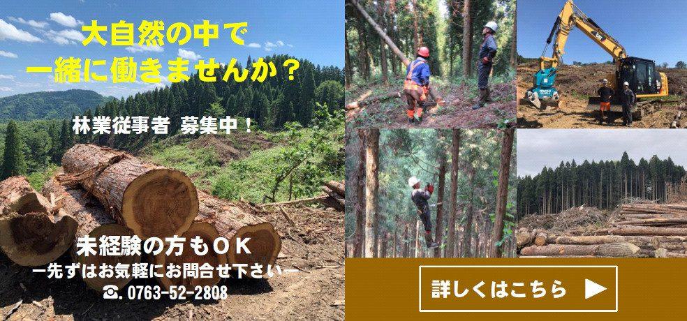 林業フォレストワーカー