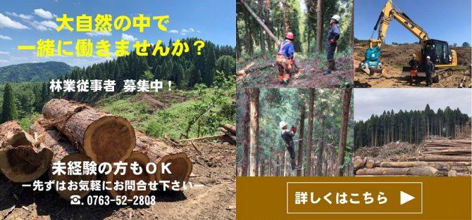 林業人材募集02_01